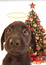 Labrador Retriever Lab Christmas Cards Box of 15 Halo