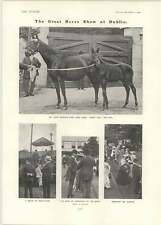 1902 Great Horse Show Dublin Fancy Fair James Doel