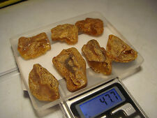 AMBER / raw baltic amber bernstein natural bursztyn baltycki genuine 琥珀 (e3815