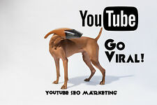 Go Viral! 7000 Youtube View-100 SUBS-170 Like-High Quality