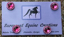 Horse Show Number Magnets - Pink - Saddleseat, Hunt Seat, Western