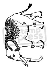 A7 'Detailed Indian Elephant' Unmounted Rubber Stamp (SP004545)