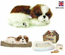 Precious Petzzz SHIH TZU Lifelike Breathing Huggable Puppy Dog Birthday Gift Box