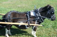 "Ultimate mini miniature horse biothane parade harness with 14"" collar"