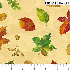 Harvest Blessings 21164-12 Quilt fabric Cotton Northcott Fall Leaves on Cream