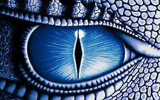 Framed Print - Giant Eye of a Blue Dragon (Picture Poster Animal Lizard Art)