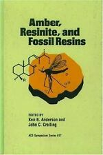 Amber, Resinite and Fossil Resins (Acs Symposium Series)-ExLibrary