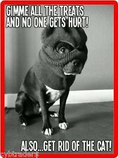 Funny French Bull Dog Bandit  Refrigerator / Tool Box  Magnet Gift Card Insert