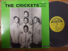 5040 The Crickets - LP