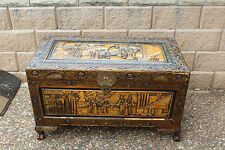 large  Timber Camphor wood Chest