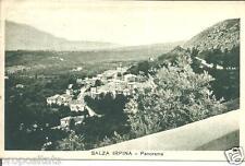 cm 023 1938 Salza Irpina (Avellino) Panorama -viagg FP -