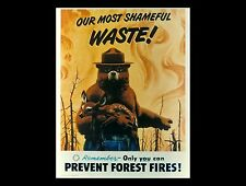 SMOKEY BEAR POSTER   24 x 36 INCH   ONLY YOU CAN
