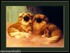 English Picture Print Pekingese Dog Duo Art Poster