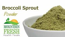 Broccoli Sprout Powder - Superfood Supplement 25g FREE UK Delivery