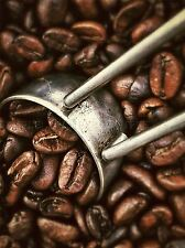 MODERN PHOTOGRAPHY COFFEE BEAN SCOOP LARGE POSTER ART PRINT BB3128A
