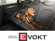 Audi Dog Safety Harness Size M For Rear Seat Genuine New