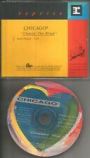 Bill Champlin CHICAGO Chasin the Wind PICTURE DISC PROMO DJ CD Single 1991 USA