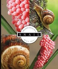 Snail (Life Cycle of A...)