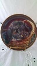 Vivi Crandall Bunny Tales Basket Case Rabbit Collector Plate Eighth Issue