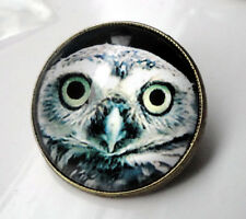 ZP345 Unusual Owl Antique Bronze Style Domed Pin Badge Brooch