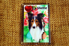 Sheltie Gift Dog Fridge Magnet 77 x 51 mm Free UK Postage Birthday Gift