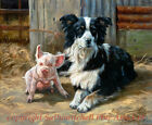 Border Collie and piglet. Ltd edition print by John Trickett. The Stepmother