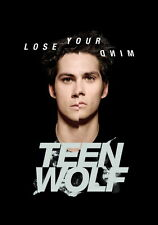 "086 Teen Wolf - American TV Series Hot Shows 14""x20"" Poster"