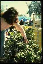 048078 Buying Brussel Sprouts A4 Photo Print
