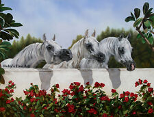 """3 Arabian Mares """"The Line Up"""" Horse Art Print 5x7 Giclee by Artist Roby Baer PSA"""