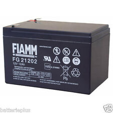 Fiamm | FGS FG21202 12V 12Ah Faston 6,3mm LC-RA1212PG1 Genesis NP12-12 RE12-12FR