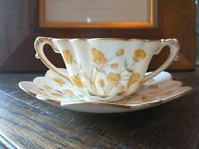 STUNNING WILEMAN ,EMPIRE SHAPE BUTTERCUPS PATTERN BOUILLON SET