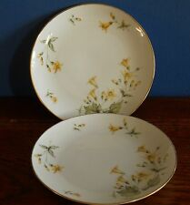 2 x Porcelain tea plates in - Maybelle / Forsythia - Franconia K&A Krautheim