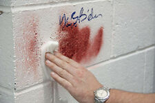 Easy-Off Graffiti Remover ANTI GRAFFITI SALVIETTE. rimuovere inchiostro, colorante, vernice Spray, penna