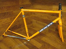RARE NEW EDDY MERCKX LIEGE 75 COLUMBUS STEEL FRAME SET CARBON FORK SMALL / 54 TT