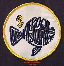 LMH Patch  CHARVALE POOL SWIM TEAM  Swimming League Club Charlton NY CLOSED 2013