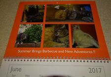 The Franklin & Butters 2017 Photo Calendar by Scoot & Newt Industries