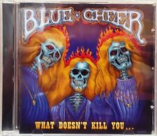 Blue Cheer - What Doesn't Kill You ... (CD 2007)