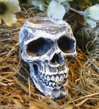 latex mold  skull candle holder latex only mold rubber casting mold skull