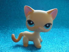 100% ORIGINAL Littlest Pet Shop  Short Hair Cat  # 339 Shipping with Polish