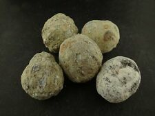5 Trancas Geodes 1 Lb Lots Whole Natural Hollow Crystal Mineral Specimens