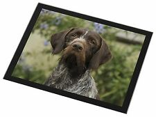 German Wirehaired Pointer Black Rim Glass Placemat Animal Table Gift, AD-GWP1GP