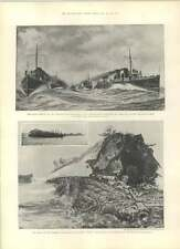 1901 Turbine Torpedo Boat Viper Destroyer Wrecked Alderney