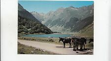 BF30938 h p le lac d  estaing types donkey  france front/back image