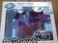 Skyhawk the first Indoor R/C Glider Aircraft, The ultimate wing, R/C Plane