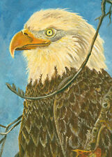 Aceo American Eagle print of original painting