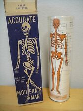 Vintage SUPERLON Plastics Masters SKELETON 1/6 Scale MODERN MAN Kit+Stand+Box