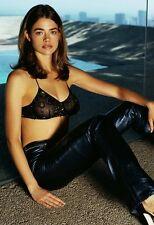 Denise Richards 13x19 Hollywood Celebrity Photo. 13 x 19 Color Mini Poster #047