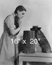 "Wizard of Oz~Judy Garland~Toto~Cairn Terrier~ Poster~16"" x 20"" Photo"