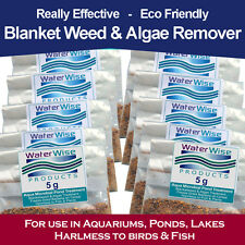 WaterWise Blanket Weed Treatment - Algae Green Water Pond Treatment Algae 5g