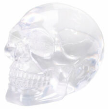 Small Translucent Skull.Clear Crystal Like Human Head Bust Statue Figurine 5451S